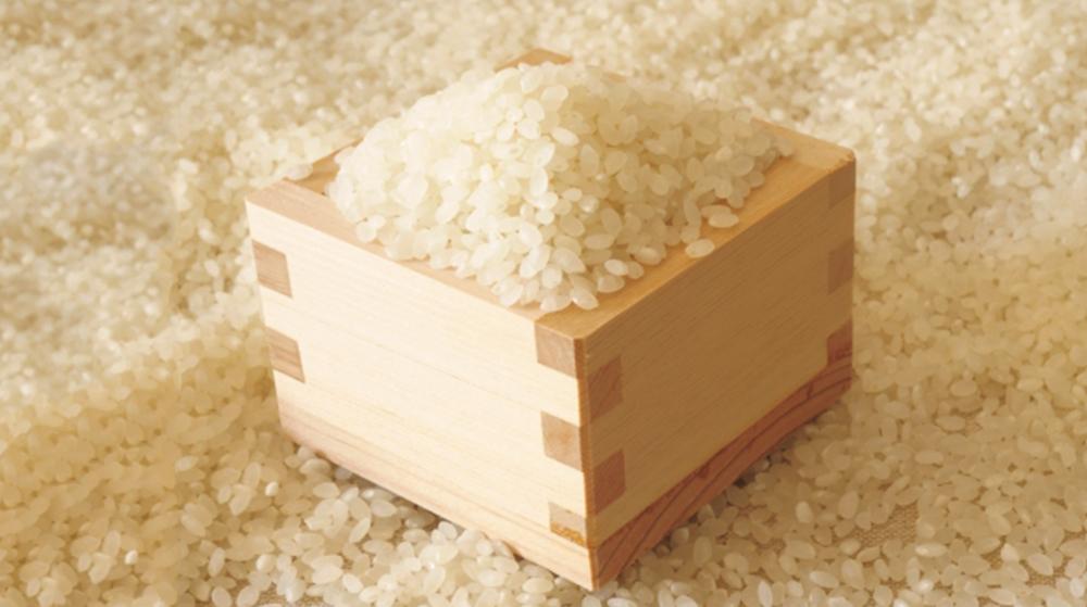 9月お米ができたよ